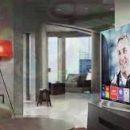 Nên mua Smart tivi hãng LG hay Sony?